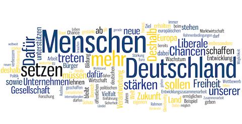 Wortwolke Wahlprogramm FDP BTW 2013 klein