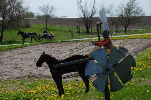 Zügel statt Gaspedal: Die Benzinpreise ärgern die Amish - christliche Traditionalisten in den USA - überhaupt nicht: Autos sind verpönt.
